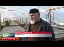 Новости • Китайские инвесторы строят теплицы в чеченском селении Цоци-Юрте