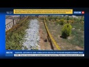 Новости на «Россия 24» • Сезон • За терактами в Тегеране виден почерк убийц иранских физиков