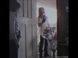 The Walking Dead Vines - Ezekiel Urban Cowboy