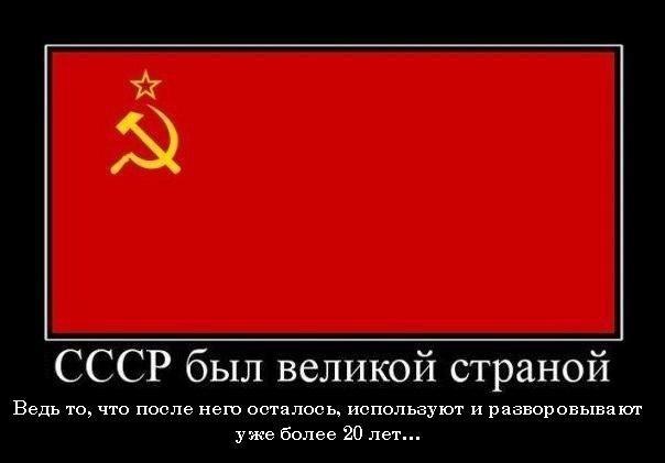 https://pp.vk.me/c836330/v836330960/286b/9yXewmaP9pc.jpg