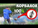 РЫБАЛКА на КОРВАЛОЛ 100 ПОКЛЁВОК КАРАСЯ на ЭТО ЛЕКАРСТВО