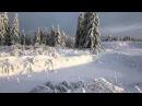 СУДЬБА - (Играет и поёт Сергей Мороков)