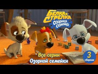 Озорная семейка - Белка и Стрелка - Все серии подряд (сборник 3)