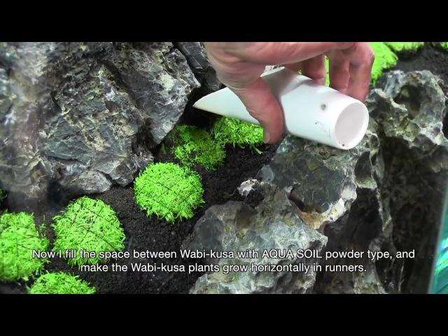TAKASHI AMANO LAYOUT SEMINAR A 180cm aquarium tank No 2 2012 02 22
