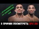 5 причин посмотреть UFC 216 \ Коэффициенты на чемпионские бои \ Тони Фергюсон - Кевин ...
