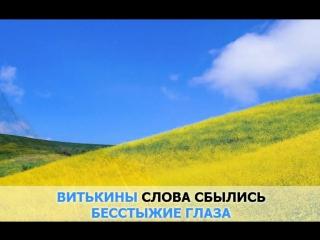 «Камыши», Манго-Манго- караоке и текст песни (Поем вместе)
