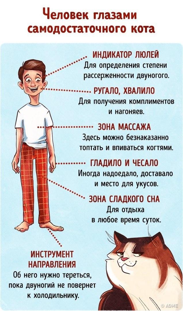 https://pp.userapi.com/c836331/v836331717/3f14d/EBaHagtzzrM.jpg