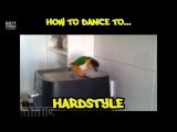 Учимся правильно танцевать под разную музыку