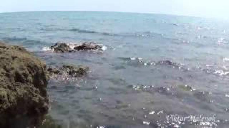 Красивый вид на море. Шум волн. Прибой. Морской бриз. Релакс. Медитация. Курортное...