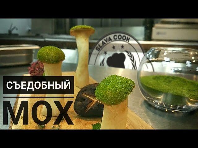 Съедобный мох. Декор. Рецепт. Slava cook » Freewka.com - Смотреть онлайн в хорощем качестве