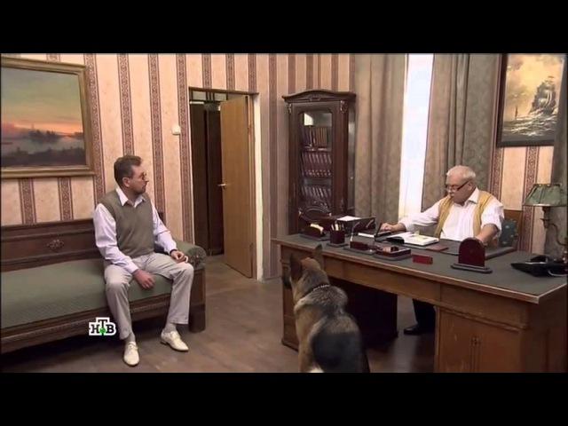 Возвращение Мухтара-2. 9 сезон 89 серия Новая квартира