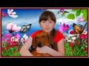 КОМНАТА ПИТОМЦЕВ РУМ ТУР - моя СОБАКА Elli Di Pets/ковер Elli Di