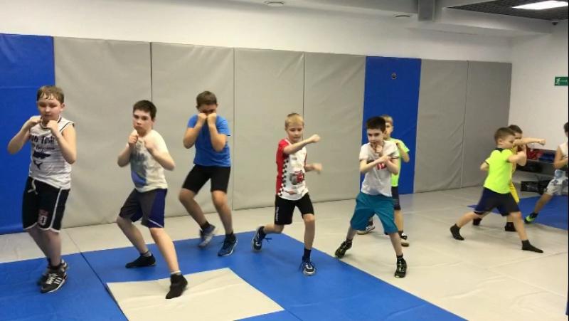 Школа бокса золотые перчатки