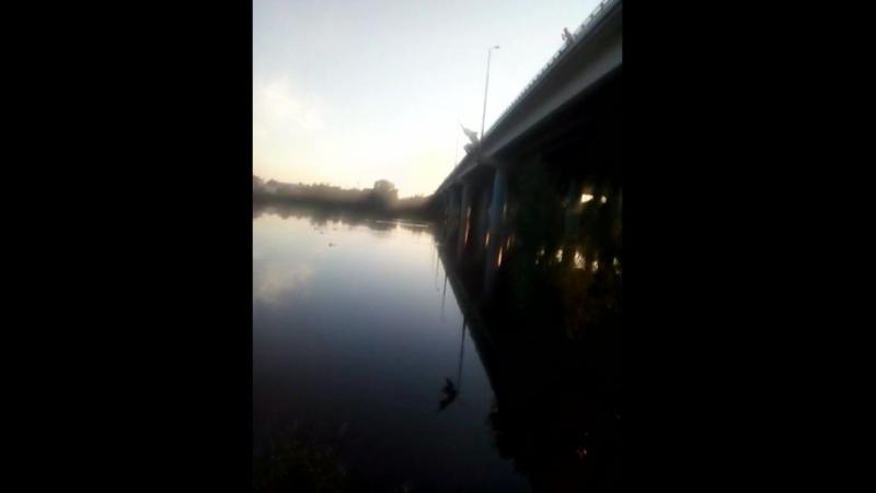 прыгнул 25ти метрового моста