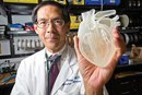 Имплантант, распечатанный на 3D-принтере…