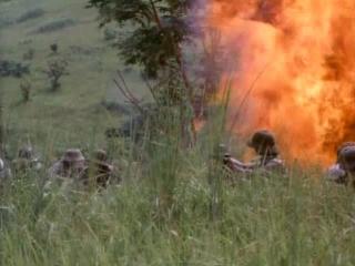 Вторая атака вьетнамцев на американскую базу (Последняя схватка в Ланг Мэй)