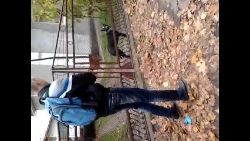 Video-2013-10-16-15-11-23