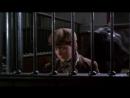Черный красавец! США - Великобритания 1994
