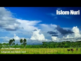 Abdulloh domla-Pokiza hayot_Абдуллох домла-Покиза хаёт - YouTube