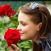 Аватар пользователя: Анжела Менова