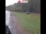 На трассе Выборг-Петербург три человека пострадали в массовой аварии