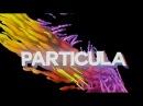 TUTORIAL DORGAS - Partículas Dorgas (After Effects)