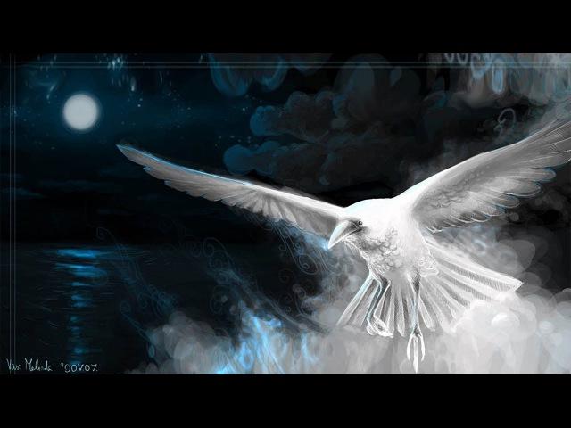 Белые Вороны - Егор Ильченко - Авторская песня