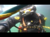 NYD Class 173 1st Dive