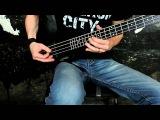 Эд КоффеRimsky-Korsakoff (Flight of the Bumblebee  Полет шмеля) Steinberger Bass Guitar (EMG)