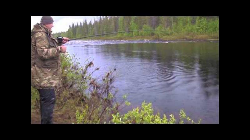 Семга с порога Лето 2015 *** Salmon Fishing Fishing Reel Nelma KP114