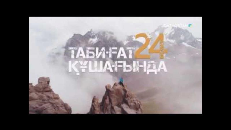 «24 сағат табиғат құшағында». Qazaqstan арнасының жаңа жобасында Серік Сәпиевпен бірге...