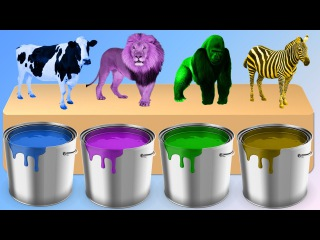 Colors for Children to Learn with Animals | Animals Bathing Colors Learning Videos for Kids Toddler