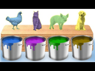 Learn Colors for Children with Animals | Animals Bathing Colors Learning Videos for Kids Toddler