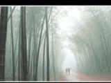 Frederick Shopen  -Фредерик Шопен  - Vals dojdya  Вальс дождя
