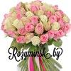 Цветы Розы Минск от 1,2 руб. Доставка бесплатная