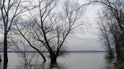 Лед на реках Самарской области сойдет лишь в апреле    Ожидается и пол
