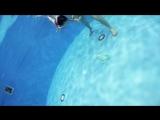 Симпотяжка София (2,2 года) с Марией. Видео от Aqua.eva