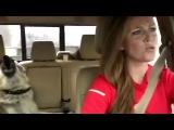 Собака поет с хозяйкой  Queen's