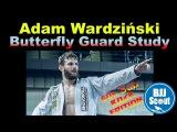 BJJ Scout: Adam Wardziński  Butterfly Guard Study Part 1