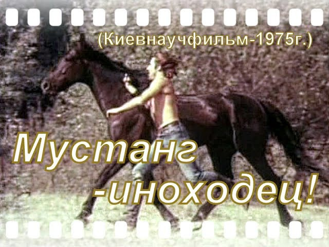 Мустанг Иноходец (вестерн 1975г.) Киевнаучфильм.
