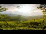 Illitheas &amp Pedro Del Mar - Bahia Del Sol (ID Remix)