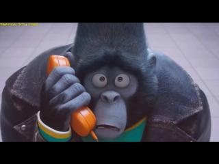 Самые ожидаемые мультфильмы 2017 года (ТОП 5) (конец 2016 - начало 2017)  Трейлеры на русском ⁄ HD