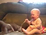 Смешной малыш и кот