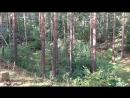 Выстрел из РПГ-26 Аглень