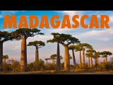 Travel Madagascar- Highlights of A Magical Country