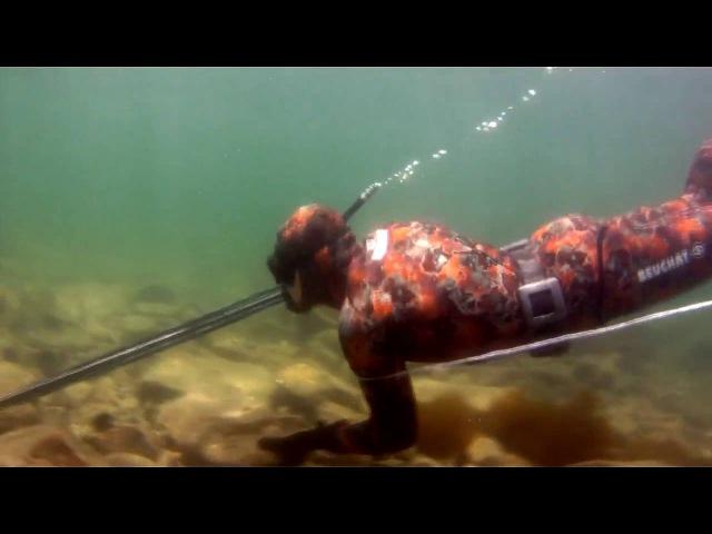 Подводная охота Владивосток