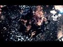 Poets Of The Fall - Sleep, sugar [ Rus cover ] | На русском | Александр Киблер feat ATMA