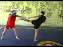 Sanda Defense - Side Kick and Front Kick