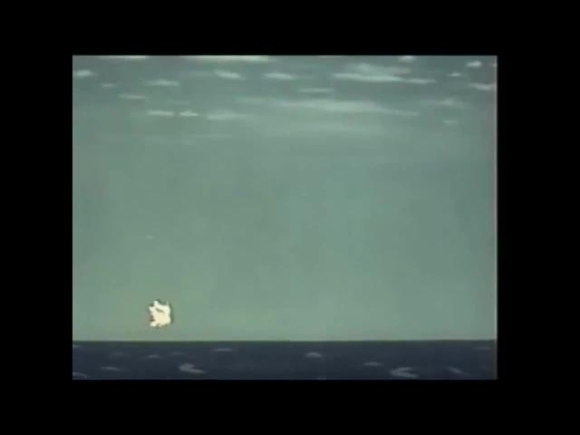 Остров Сокровищ - Coward Killing Time · coub, коуб