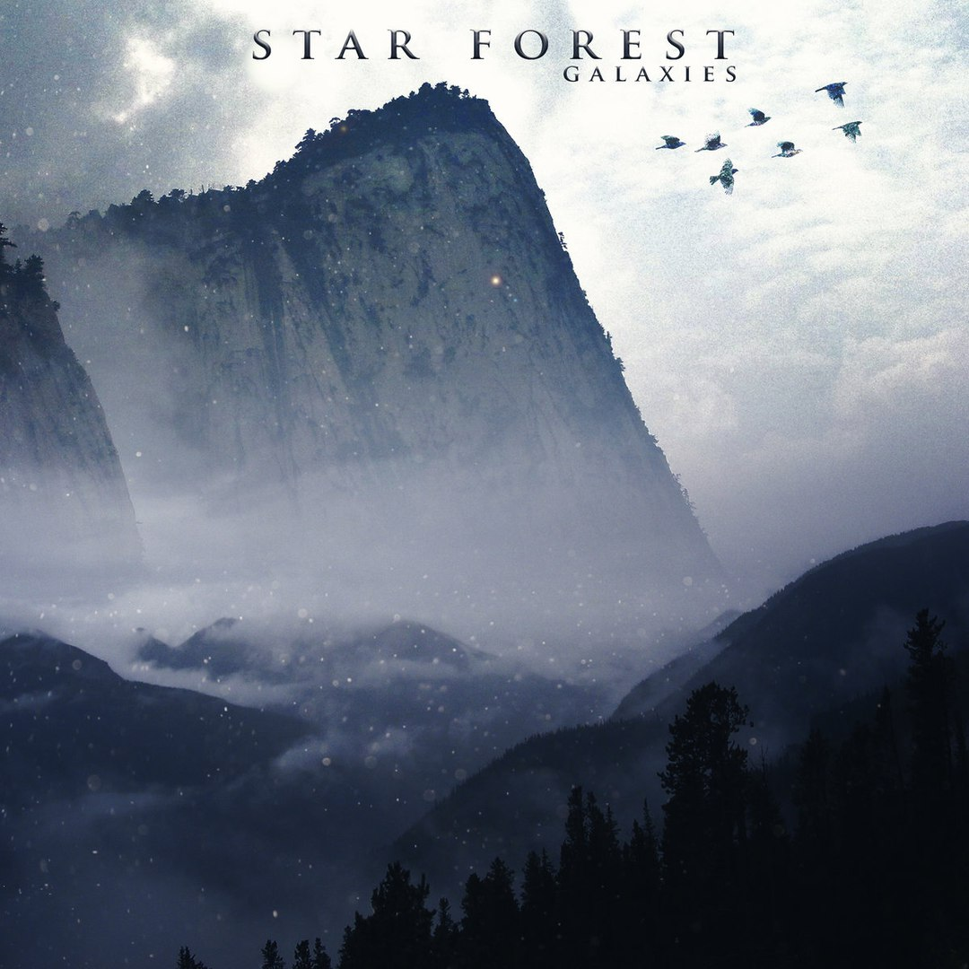Star Forest - Galaxies (2017)